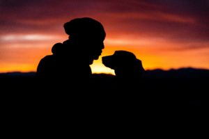 Man With Dog Silhouetted at Sunset patrick-hendry-546310-unsplash